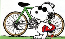 cartoon-bike-rider-30640-hd-wallpapers-250x150